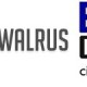 Well Dressed Walrus and Belsby Logos